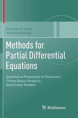 Methods for Partial Differential Equations by Marcelo R. Ebert