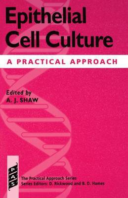 Epithelial Cell Culture image
