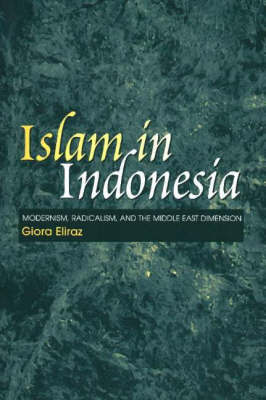 Islam in Indonesia by Giora Eliraz image