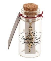 Harry Potter: Liquid Luck - Necklace & Glass Bottle