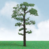 JTT: O Scale Scenic Scots Pine Tree - Single Pack