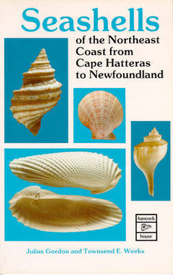 Seashells of the Northeast Coast from Cape Hatteras to Newfoundland by Julius Gordon