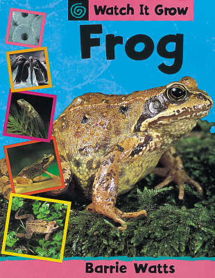 Frog by Barrie Watts