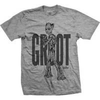 Avengers Infinity War Teen Groot Colour Mens Grey TS: XL