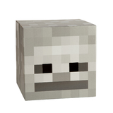 Minecraft Skeleton Head