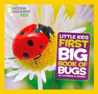 Little Kids First Big Book of Bugs by Catherine D. Hughes