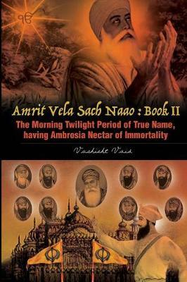 The Morning Twilight Period of True Name, Having Ambrosia Nectar of Immortality -Book II by Vashisht Vaid image