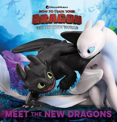How To Train Your Dragon: The Hidden World: World of Dragons image