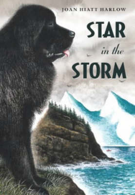 Star in the Storm by Joan Hiatt Harlow image