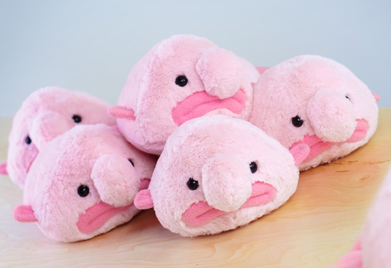 Blobfish - Mini Stuffed Plush Toy image