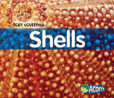 Shells by Cassie Mayer