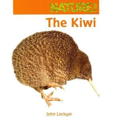 The Kiwi by J. Lockyer