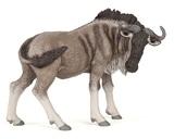 Papo - Wildebeest (Gnu)