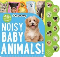 Discovery: Noisy Baby Animals! by Editors Of Silver Dolphin Books