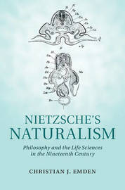 nietzsche and platonism Nietzsche and platonism essay examples nietzsche: exposing the christianity hoax for thousands of years the bible has represented the foundation for one.