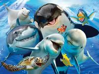 Holdson: Selfies 500pce Jigsaw Puzzle - Underwater Wonders