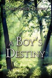 A Boy's Destiny by Christopher Trevino image