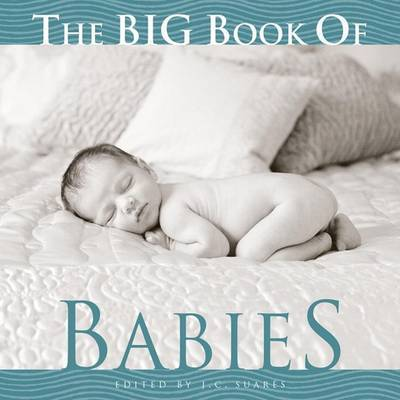 The Big Book of Babies image