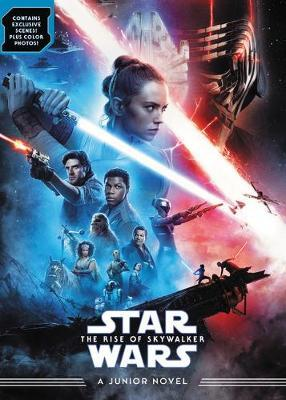 Star Wars the Rise of Skywalker by Michael Kogge