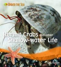 Under the Sea - Hermit Crabs by Sally Morgan