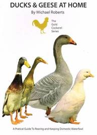 Ducks and Geese at Home by Michael Roberts image