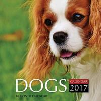 Dogs Calendar 2017 by David Mann image