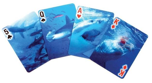 Kikkerland: 3D Sharks - Playing Cards