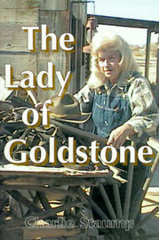 The Lady of Goldstone by Charlie Staump image