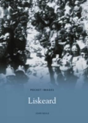 Liskeard by John Neale