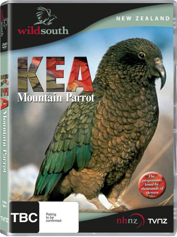 Kea: Mountain Parrot on DVD