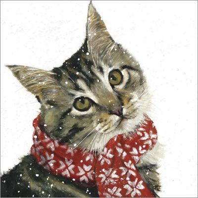 Papaya: Christmas Cards - Ollie (6pk)