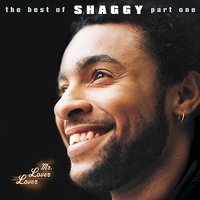 Mr. Lover Lover: The Best Of... Vol. 1 by Shaggy image