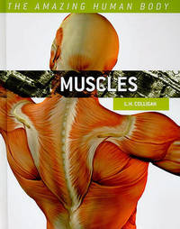 Muscles by L H Colligan image