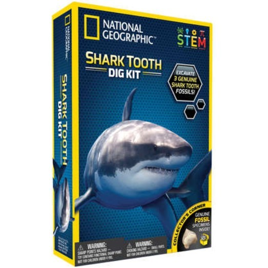 National Geographic: Shark Tooth Dig Kit image