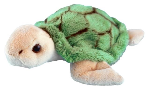 Antics - Wild Mini Turtle - 12cm