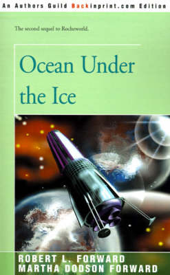Ocean Under the Ice image