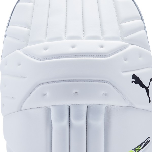 Puma Evo Speed 1 Mens Cricket Pads