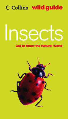 Insects by Bob Gibbons
