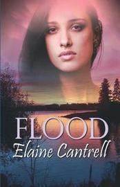 Flood by Elaine Cantrell