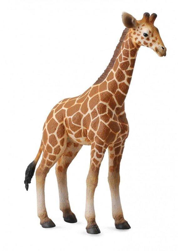 CollectA - Reticulated Giraffe Calf