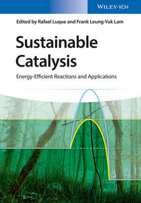 Sustainable Catalysis image