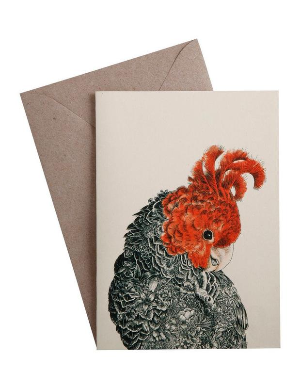 Maxwell & Williams: Marini Ferlazzo Birds Greeting Cards - Gang Gang