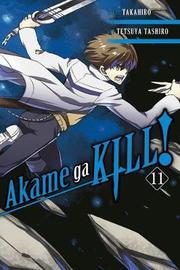 Akame ga KILL!, Vol. 11 by Takahiro