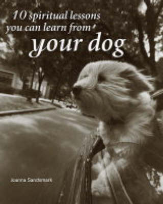 10 Spiritual Lessons You Can Learn from Your Dog by Joanna Sandsmark
