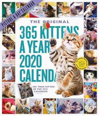 2020 365 Kittens-A-Year Picture-A-Day Calendar by Workman Publishing