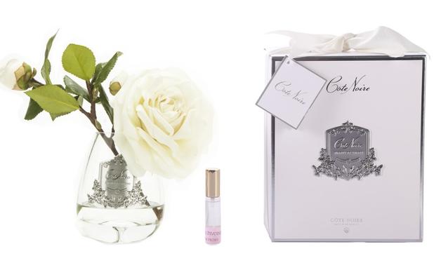 Cote Noire: Tea Rose Ivory White - Clear