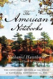 American Notebooks V8 by Hawthorne
