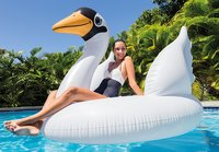 Intex: Mega Swan Island