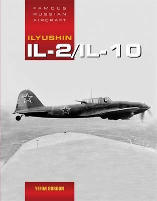 Ilyushin Il-2 by Yefim Gordom
