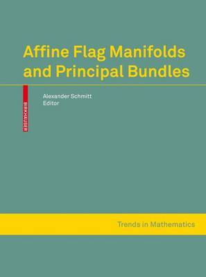 Affine Flag Manifolds and Principal Bundles